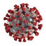 coronavirus-wp